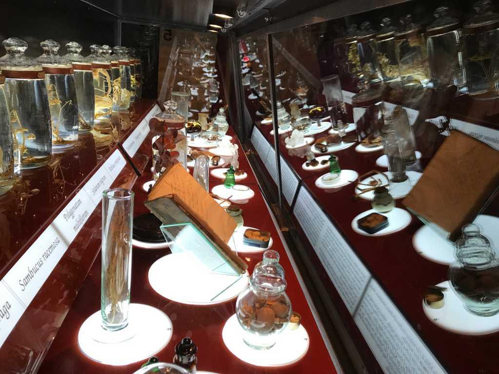 Exposición Brujería en Toledo, una de las vitrinas