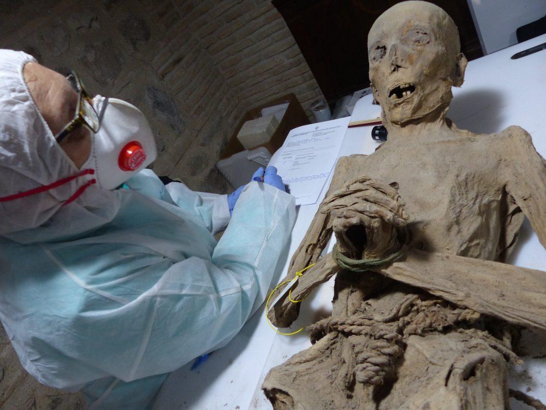 Momia de San Andrés. Foto: Mercedes González